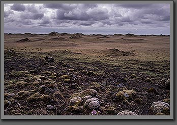 Old Lava Field Iceland
